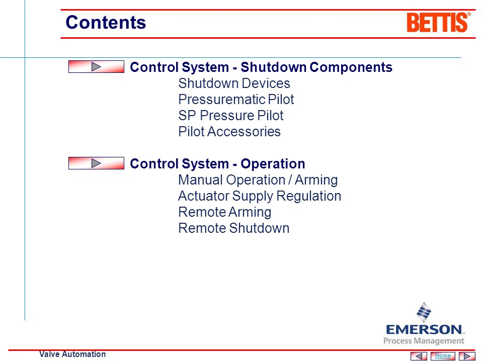 Contents Control System - Shutdown Components Shutdown Devices