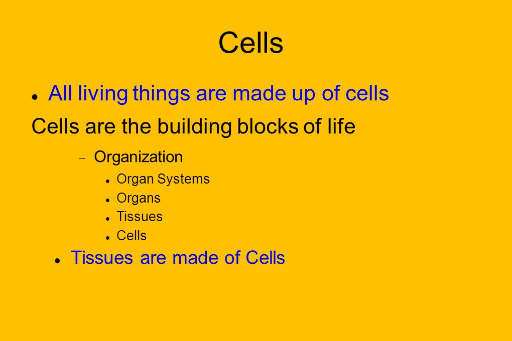 Cells All living things are made up of cells