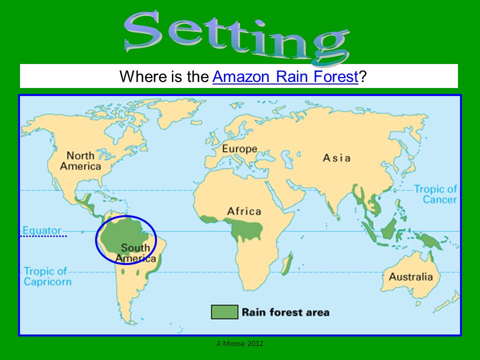 Where is the Amazon Rain Forest