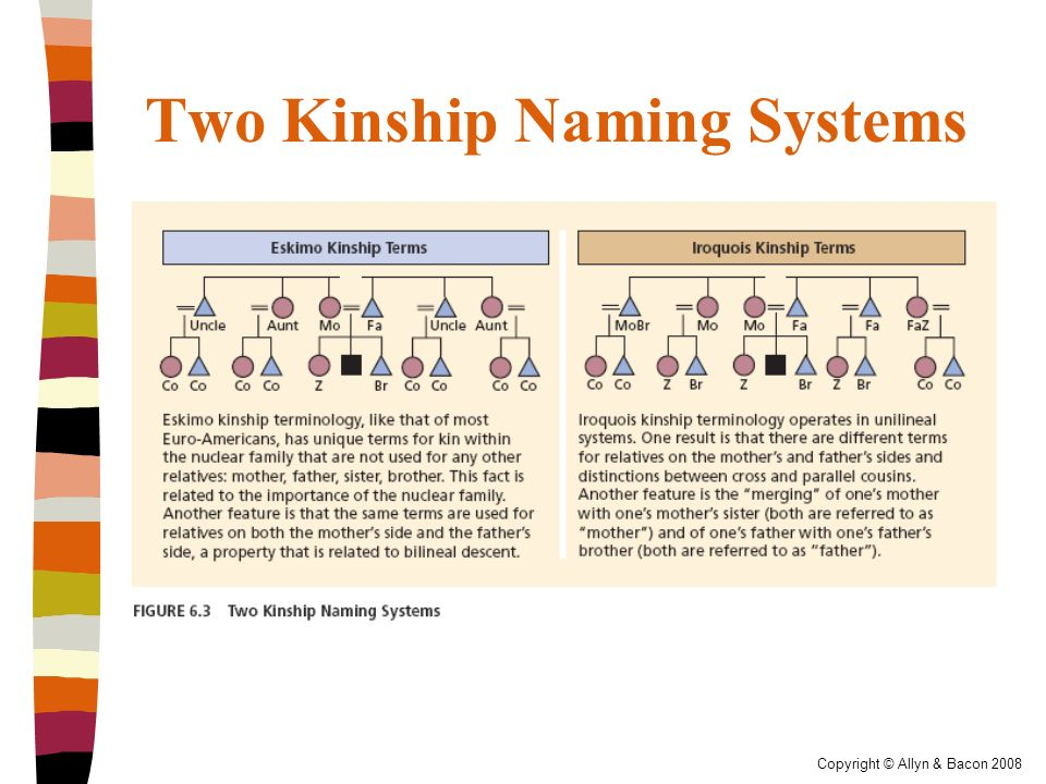the iroquois kinship system There's one more, a system that looks like iroquois until we zoom out and meet your grandparents' siblings' descendants you'll end up with a dizzying but amazing sense for how linguistic kinship.