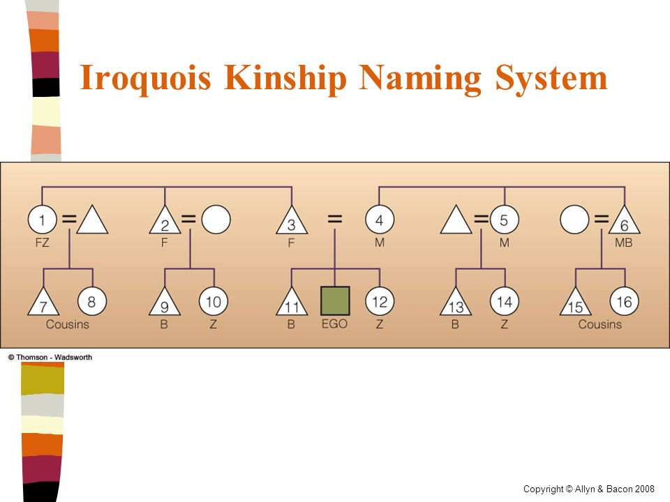Kinship and Domestic Life (Chapter 6) - ppt download