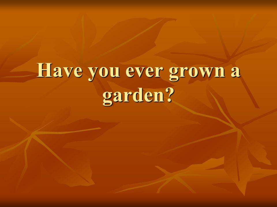 Have you ever grown a garden