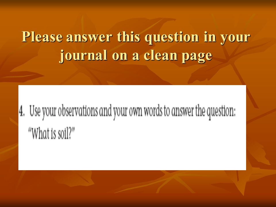Please answer this question in your journal on a clean page