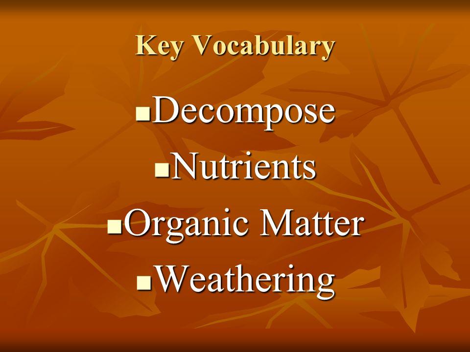 Key Vocabulary Decompose Nutrients Organic Matter Weathering