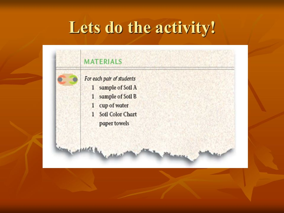 Lets do the activity!
