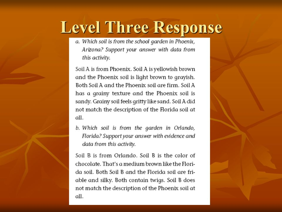 Level Three Response
