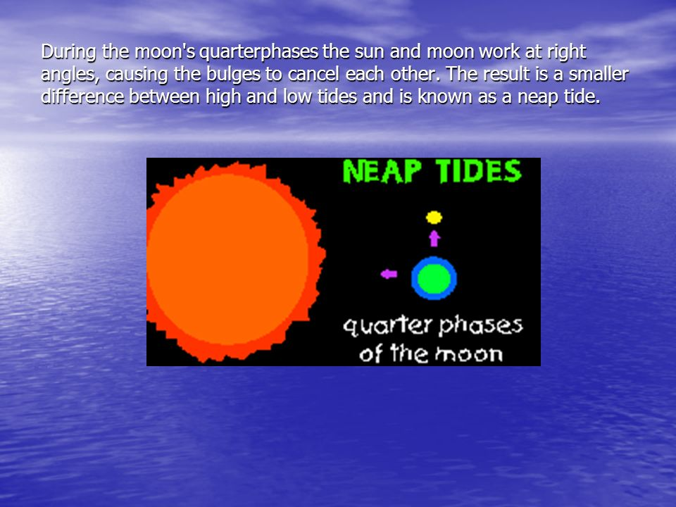 During the moon s quarterphases the sun and moon work at right angles, causing the bulges to cancel each other.