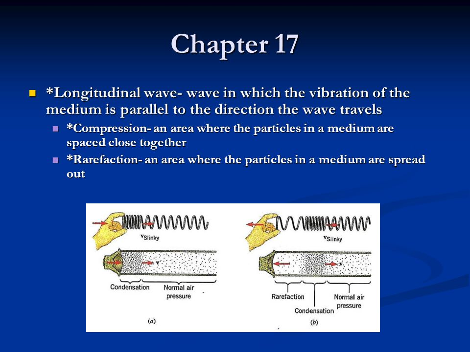 Chapter 17 *Longitudinal wave- wave in which the vibration of the medium is parallel to the direction the wave travels.
