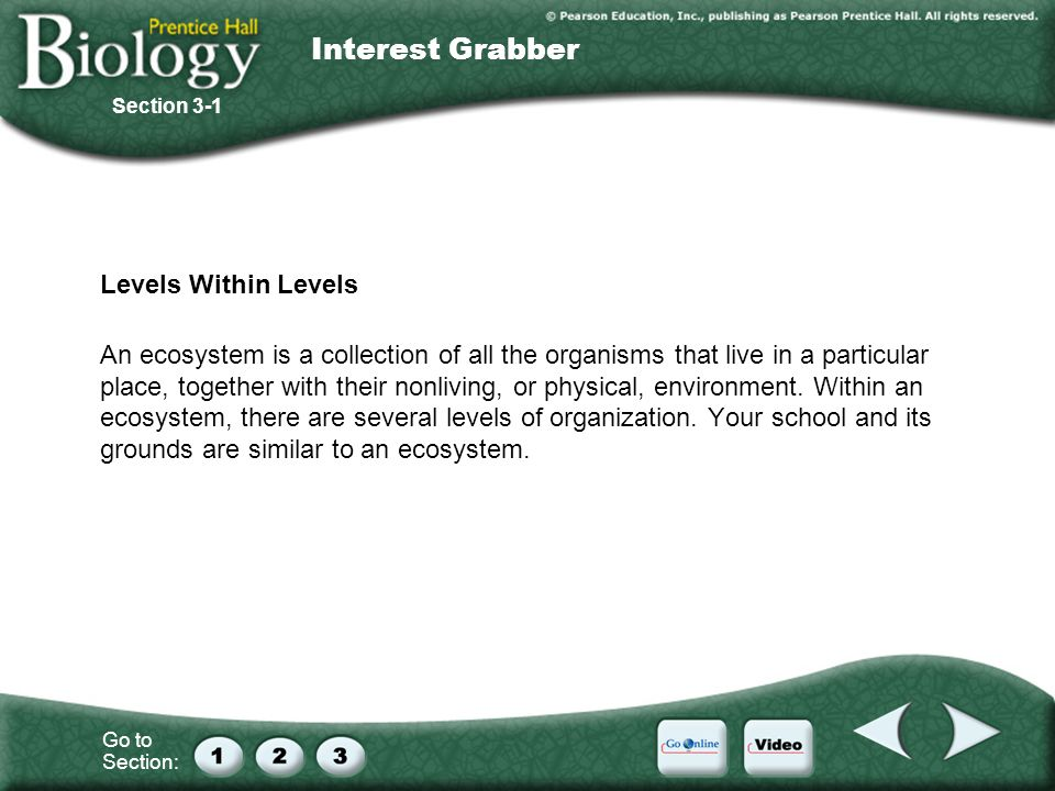 Interest Grabber Levels Within Levels