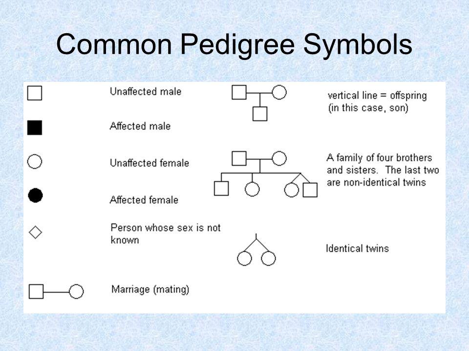 Common Pedigree Symbols