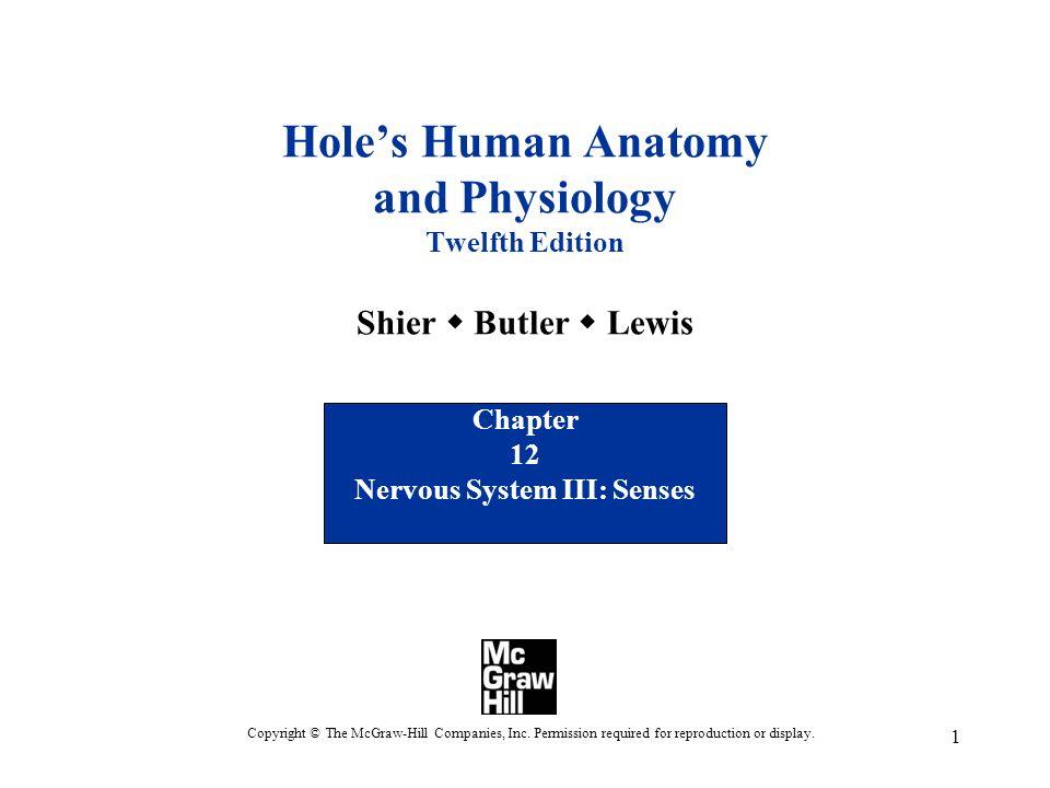 Chapter 12 Nervous System III: Senses - ppt download