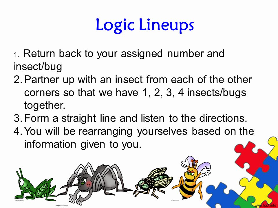 Logic Lineups 1. Return back to your assigned number and insect/bug.