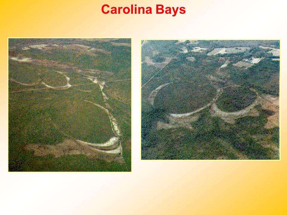 Carolina Bays