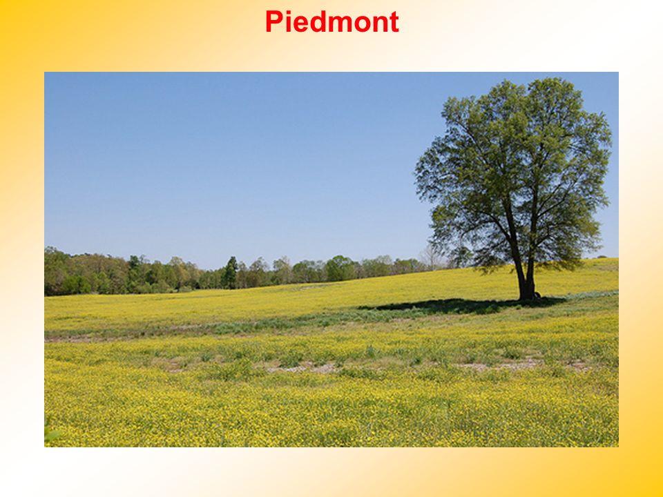 Piedmont