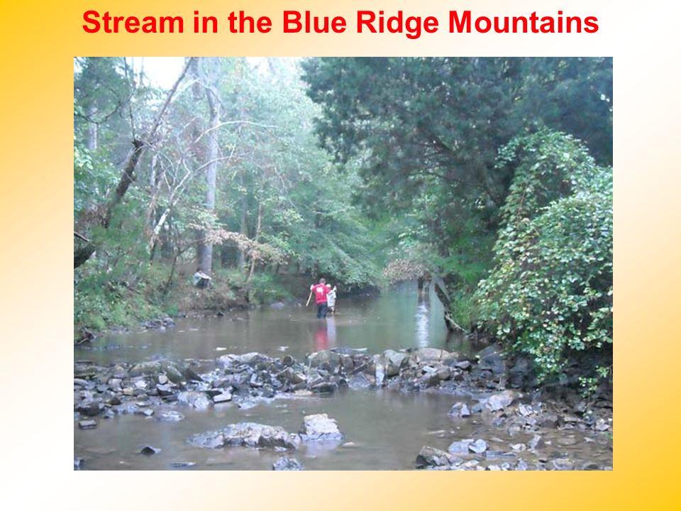 Stream in the Blue Ridge Mountains