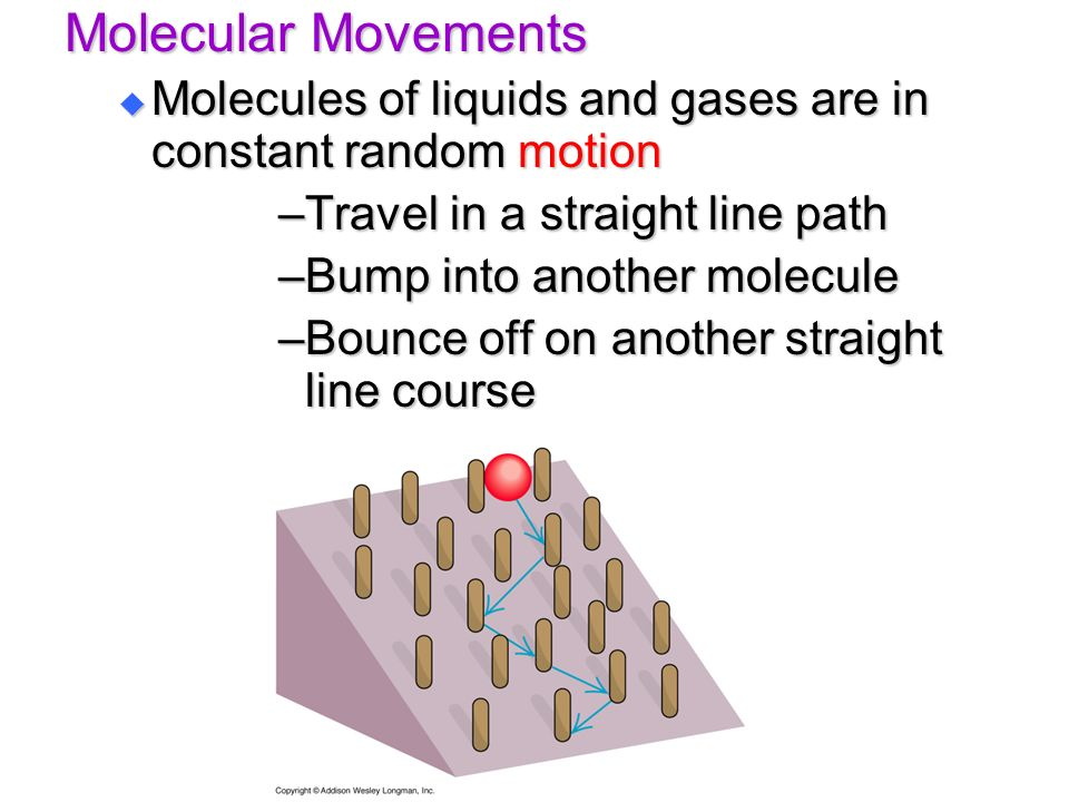 Molecular Movements Molecules of liquids and gases are in constant random motion. Travel in a straight line path.