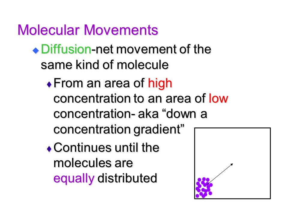 Molecular Movements Diffusion-net movement of the same kind of molecule.
