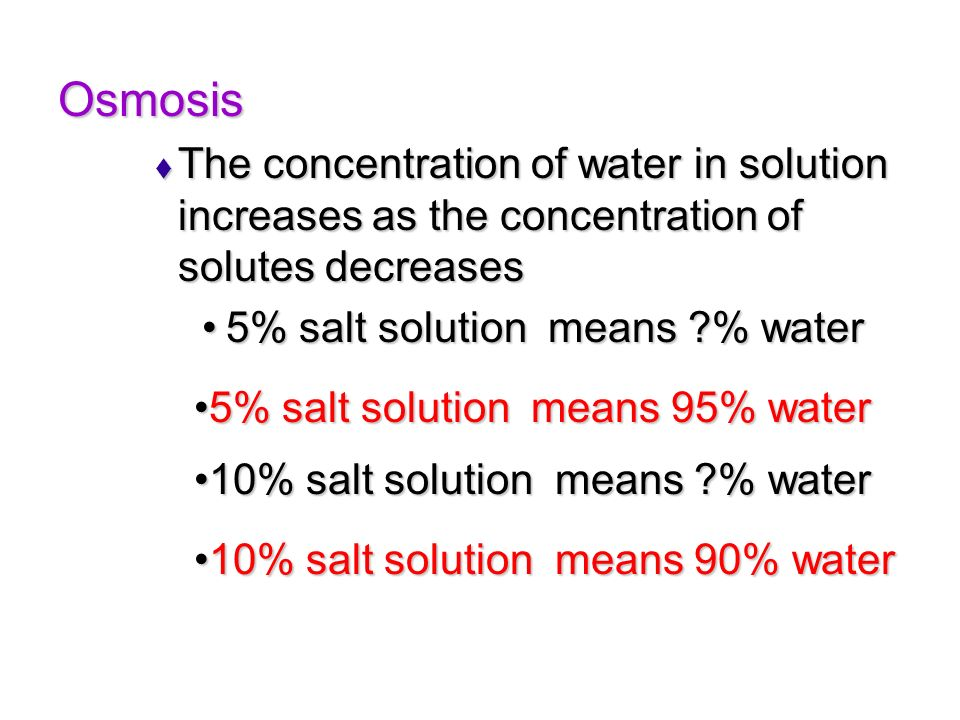 Osmosis The concentration of water in solution increases as the concentration of solutes decreases.