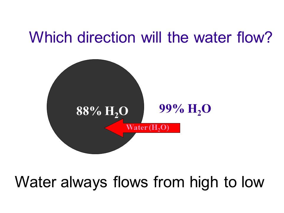 Which direction will the water flow