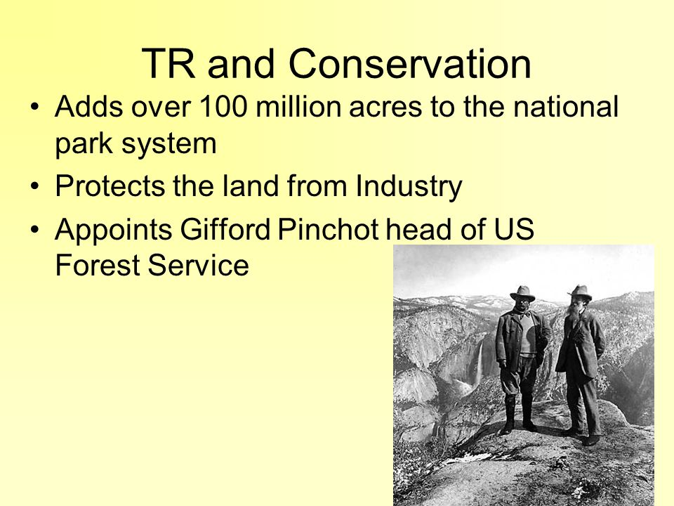 TR and Conservation Adds over 100 million acres to the national park system. Protects the land from Industry.