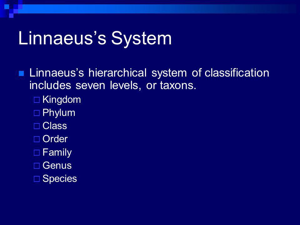 Linnaeus's System Linnaeus's hierarchical system of classification includes seven levels, or taxons.