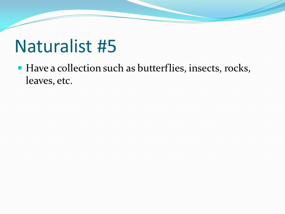 Naturalist #5 Have a collection such as butterflies, insects, rocks, leaves, etc.