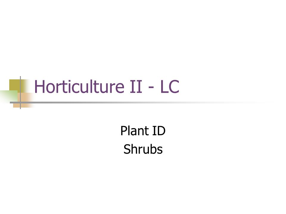 Horticulture II - LC Plant ID Shrubs