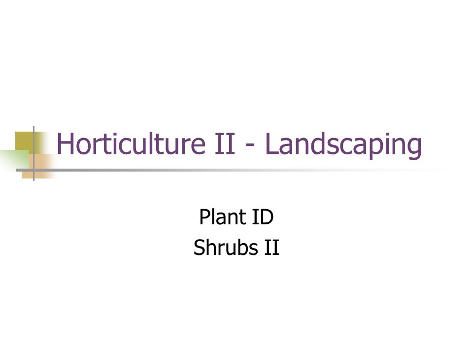 Horticulture II - Landscaping