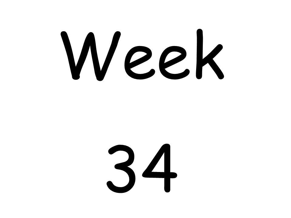 Week 34