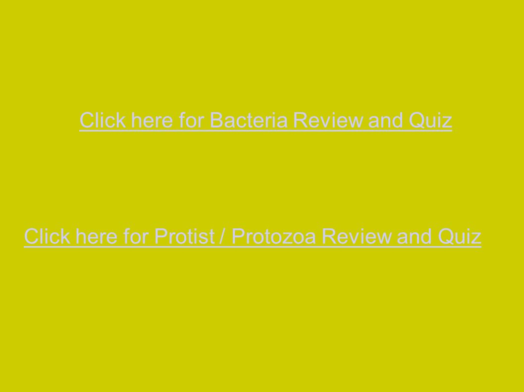 Click here for Bacteria Review and Quiz