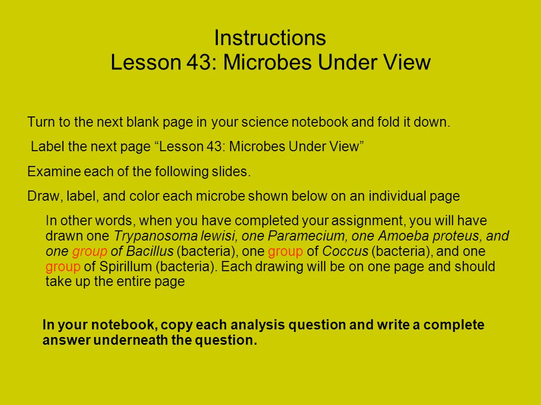 Instructions Lesson 43: Microbes Under View