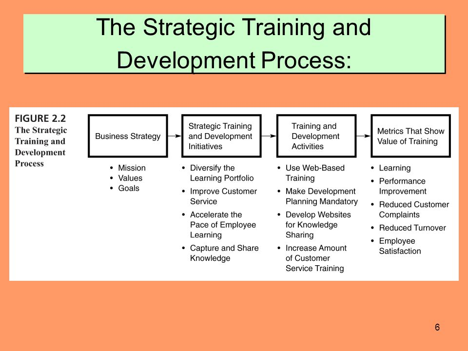 Cross-Training: Creating and Implementing a Successful Plan