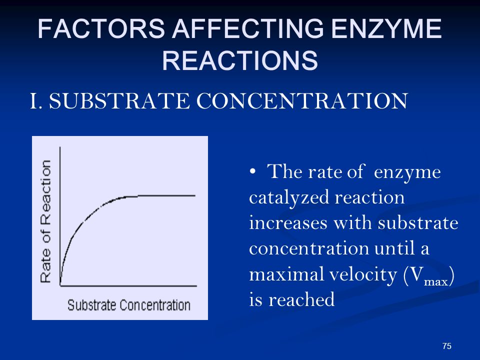the effect of substrate concentration on an enzyme catalyzed reaction Enzyme catalyzed reaction to increase as  illustration of the effect of substrate concentration on reaction rate sets of four enzyme molecules each are.