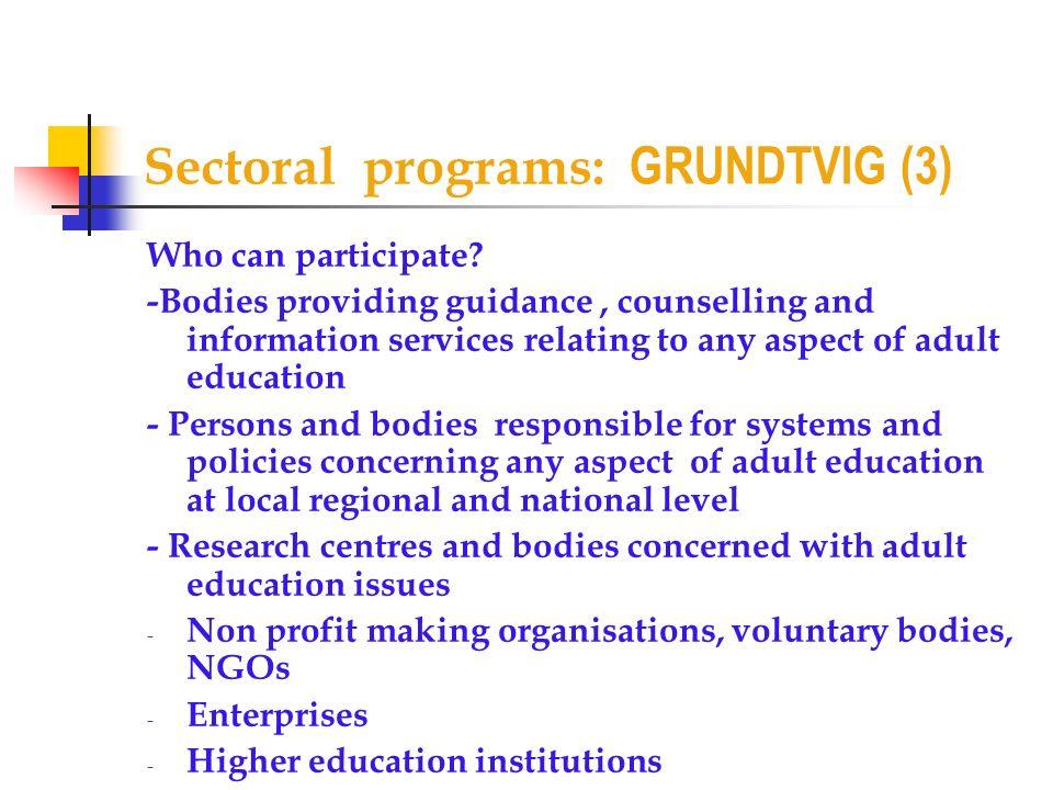 Sectoral programs: GRUNDTVIG (3)