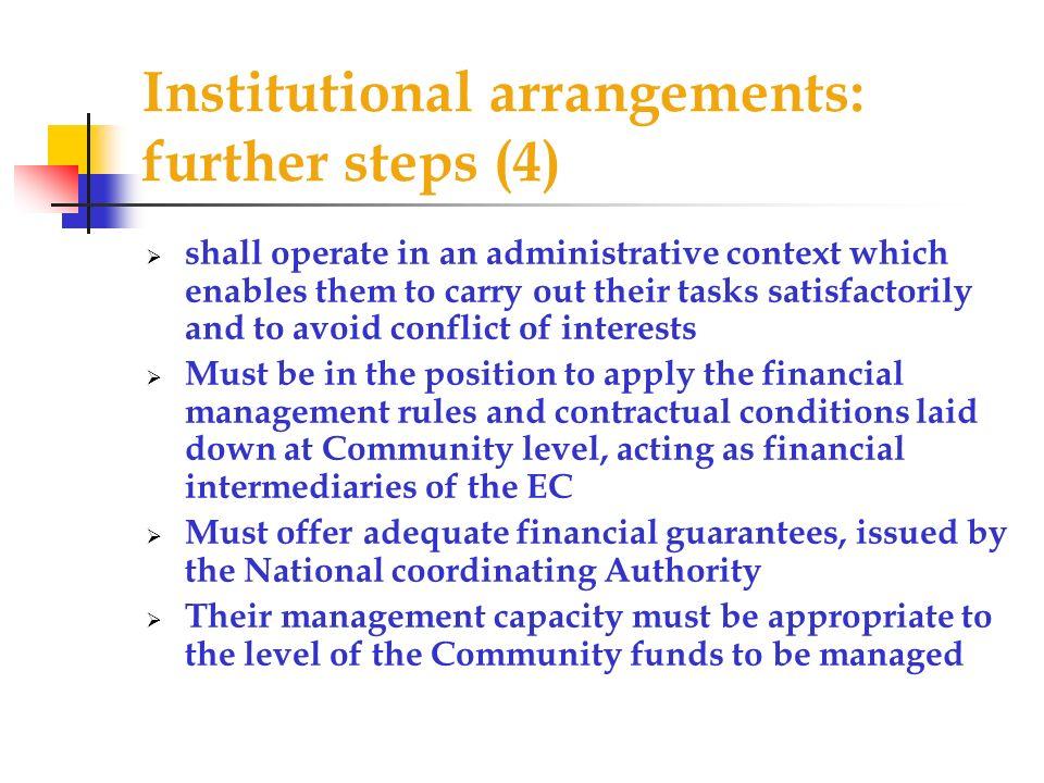 Institutional arrangements: further steps (4)