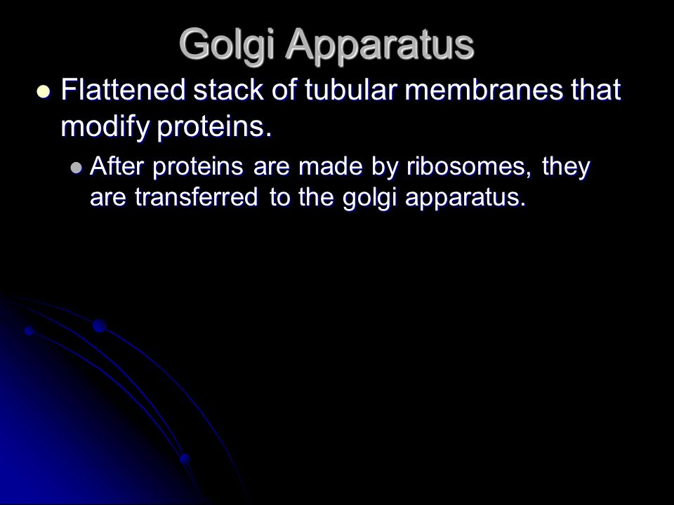 Golgi Apparatus Flattened stack of tubular membranes that modify proteins.