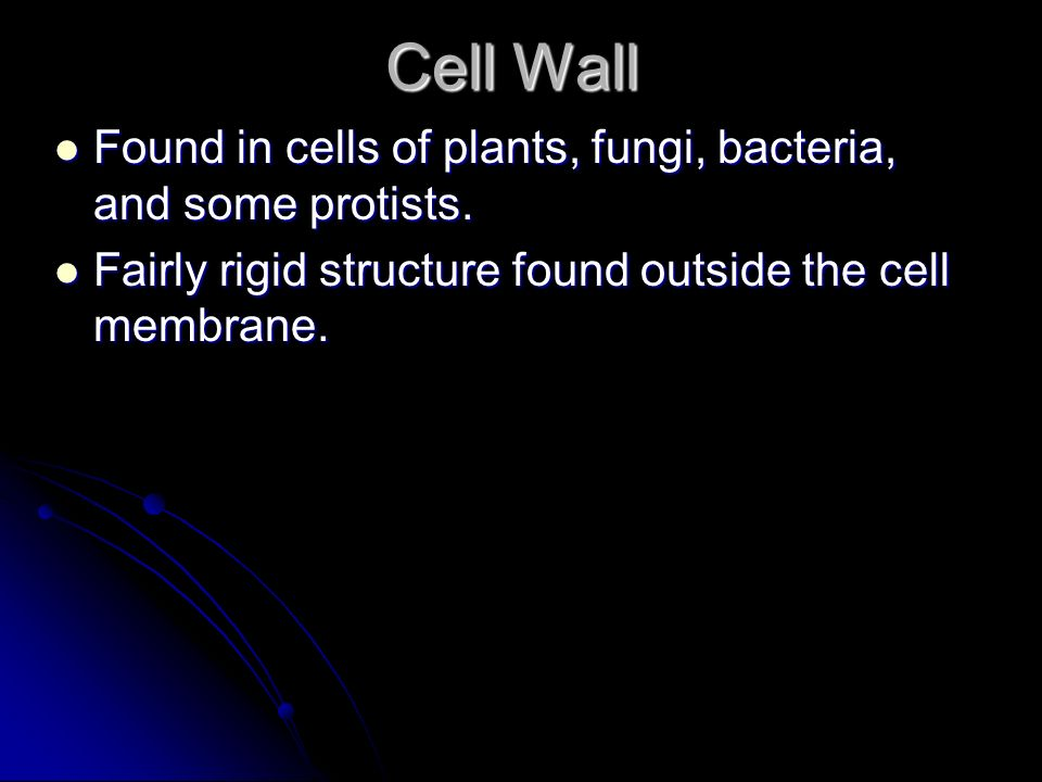 Cell Wall Found in cells of plants, fungi, bacteria, and some protists.