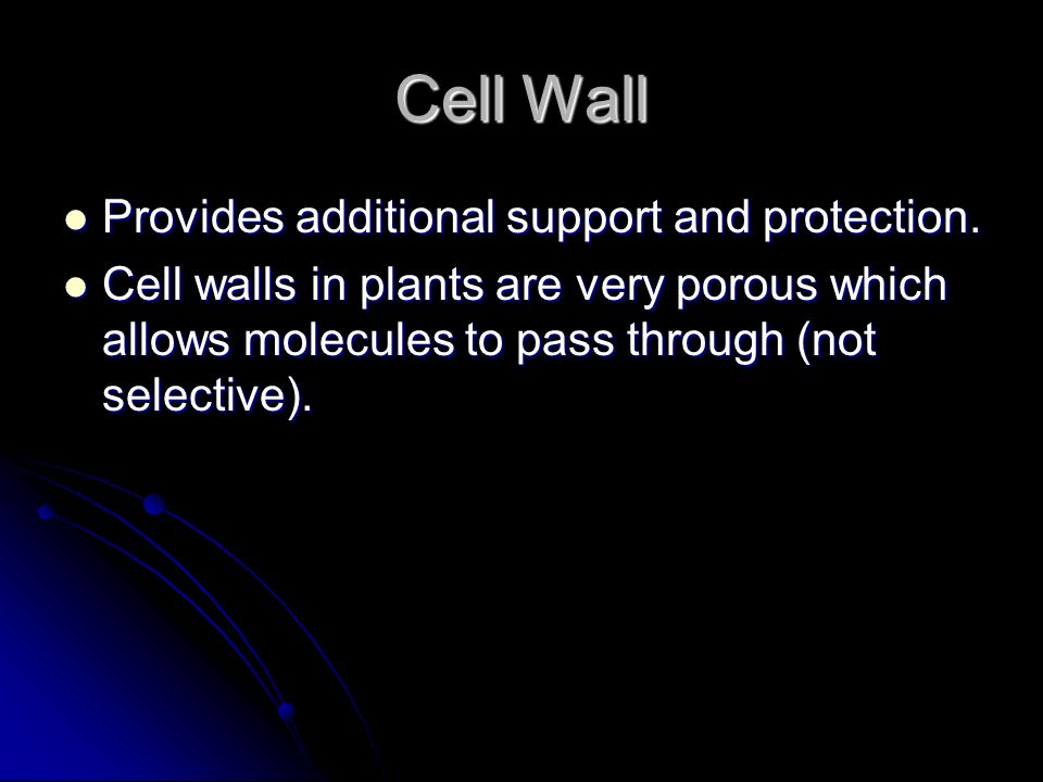 Cell Wall Provides additional support and protection.