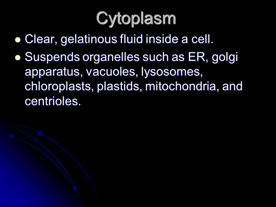 Cytoplasm Clear, gelatinous fluid inside a cell.