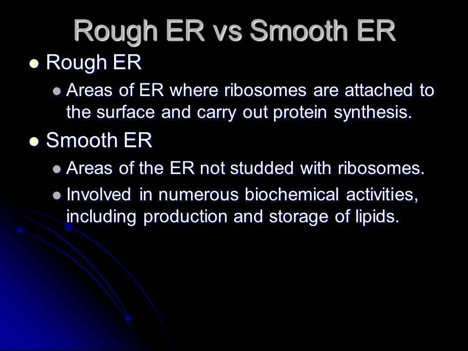 Rough ER vs Smooth ER Rough ER Smooth ER