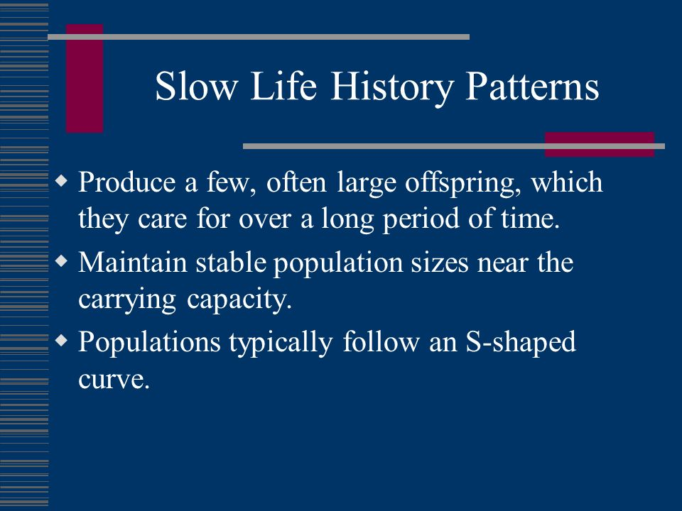 Slow Life History Patterns