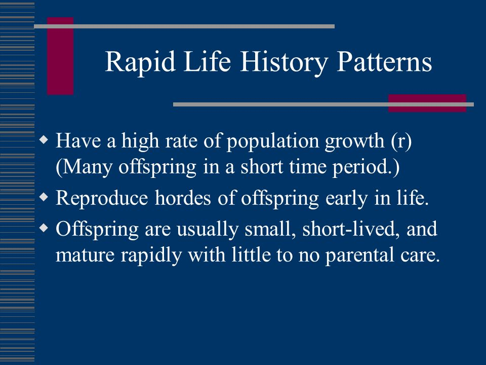 Rapid Life History Patterns
