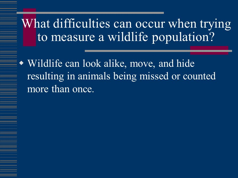 What difficulties can occur when trying to measure a wildlife population