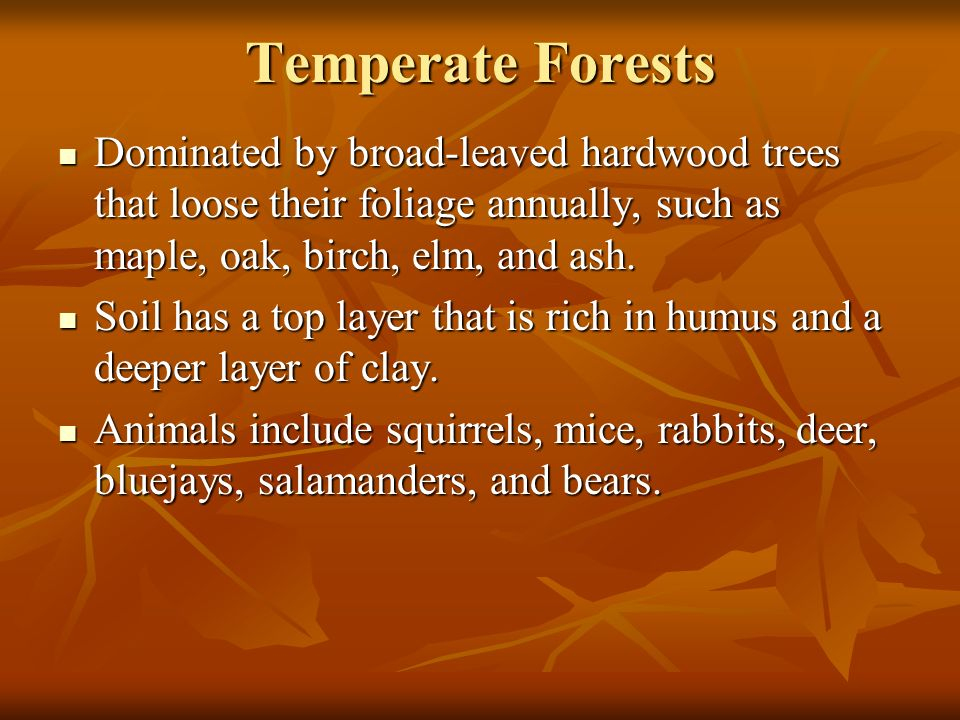 Temperate Forests Dominated by broad-leaved hardwood trees that loose their foliage annually, such as maple, oak, birch, elm, and ash.