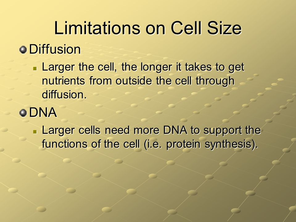 Limitations on Cell Size