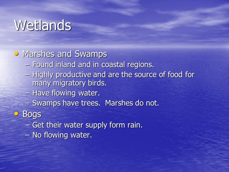 Wetlands Marshes and Swamps Bogs Found inland and in coastal regions.