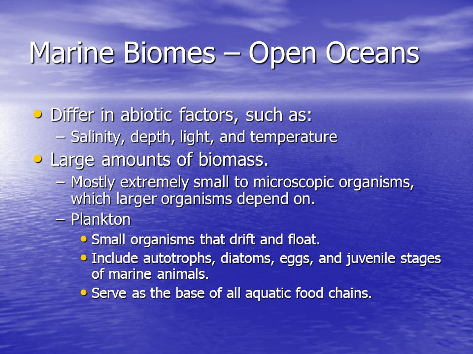 Marine Biomes – Open Oceans