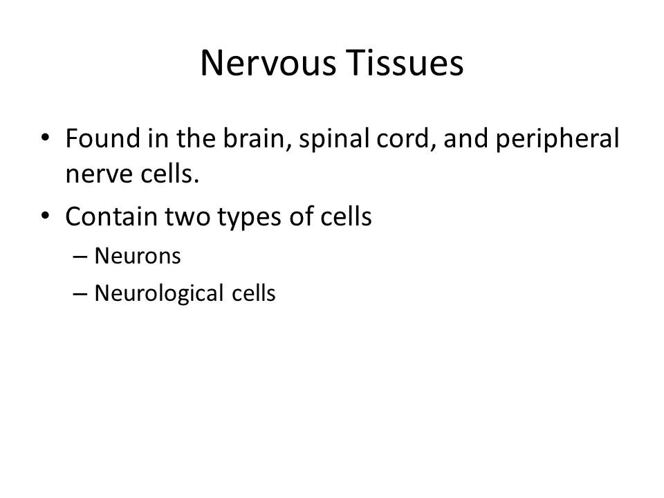 Nervous Tissues Found in the brain, spinal cord, and peripheral nerve cells. Contain two types of cells.