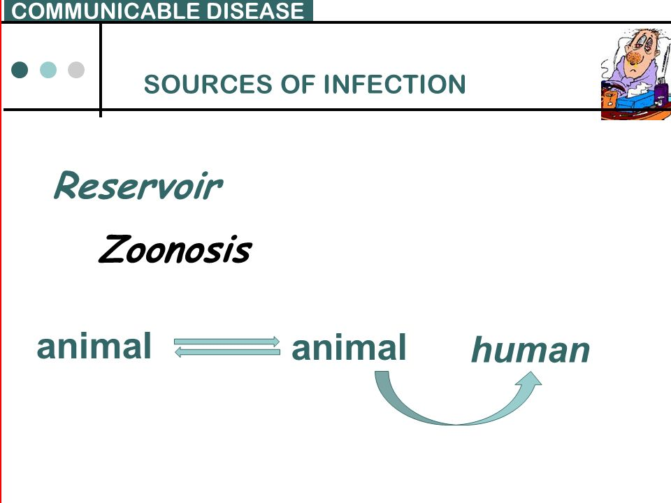 Reservoir Zoonosis animal human SOURCES OF INFECTION