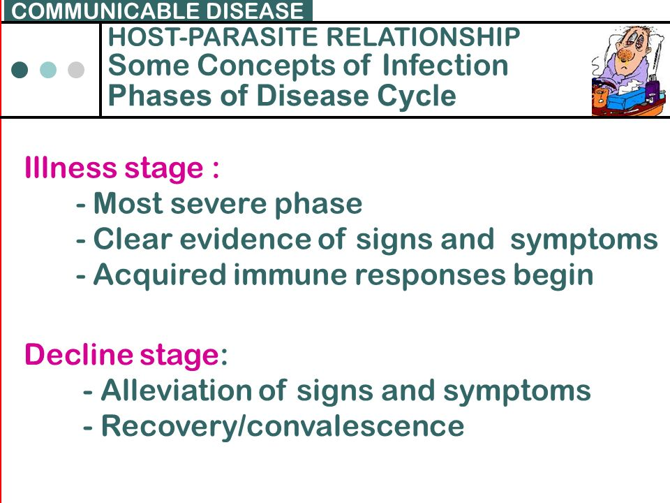 Some Concepts of Infection Phases of Disease Cycle